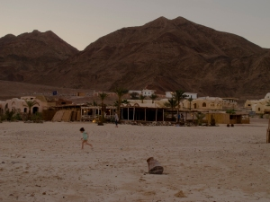 Basata tra Noweeba e Taba, Sinai. Egitto