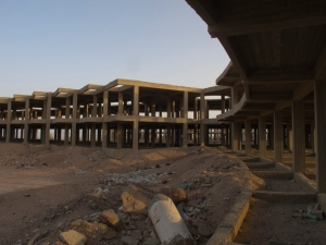 Ecomostri a Dahab, Sinai. Egitto
